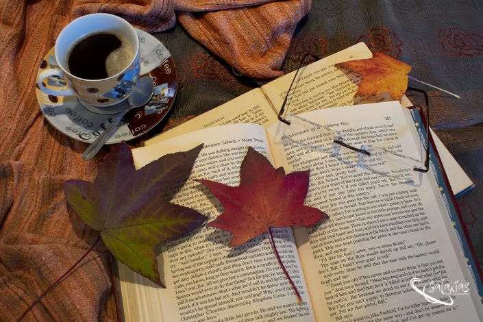 Maple tree leaves lying on a book next to a cup of coffee