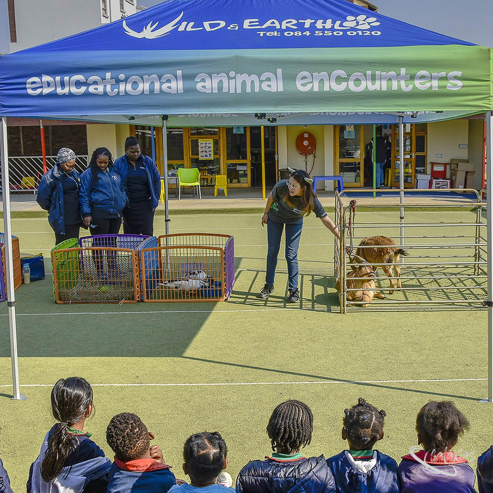 Building Blocks School (Farm Animal Day) was photographed by Galaxias Photography in Pretoria East