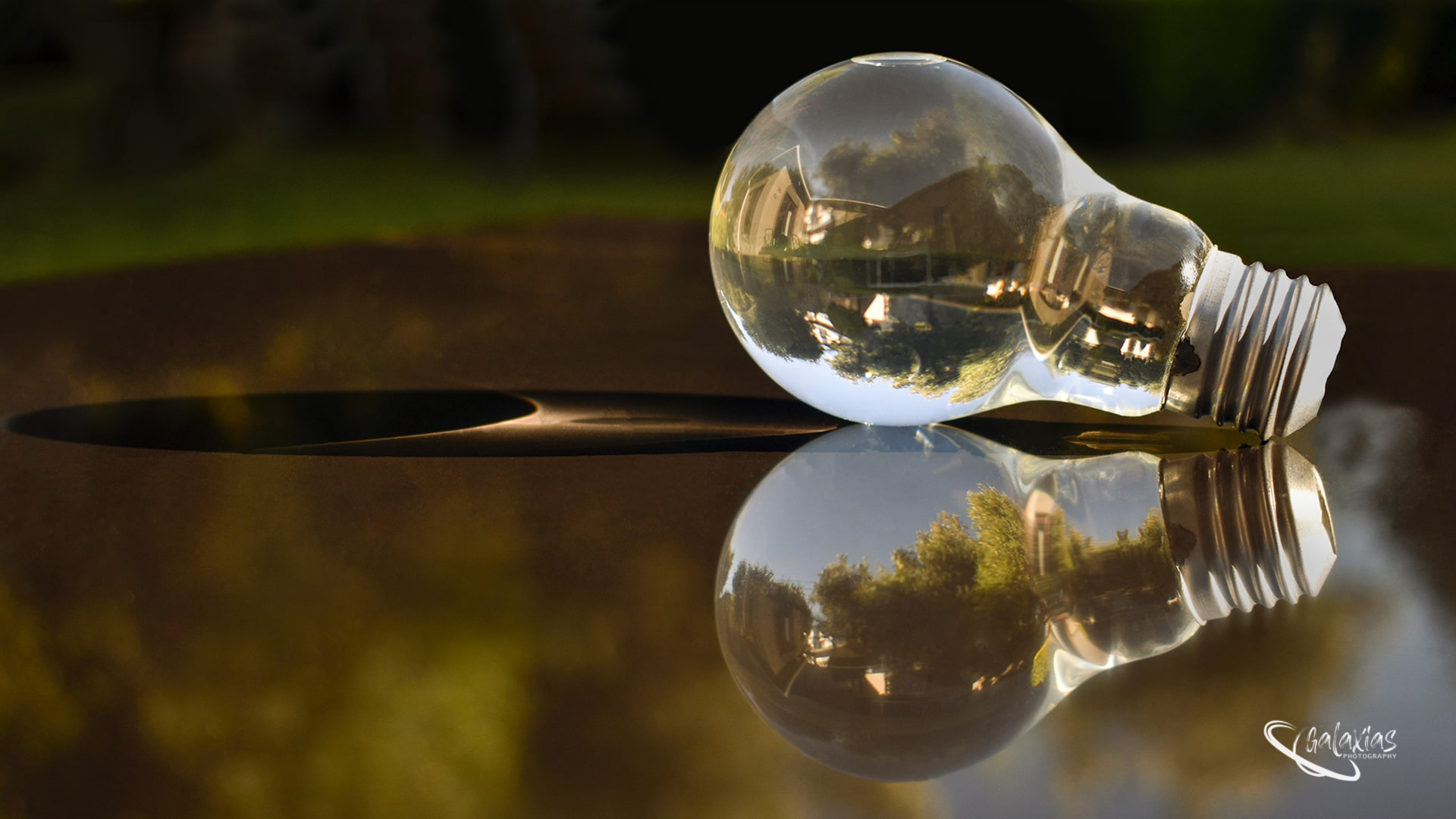 Light bulb with Water, photographed by Galaxias Photography, Pretoria East, South Africa