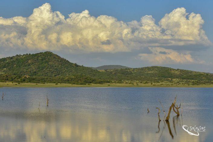 Landscape photo of nature at Mankwe dam in Pilansberg
