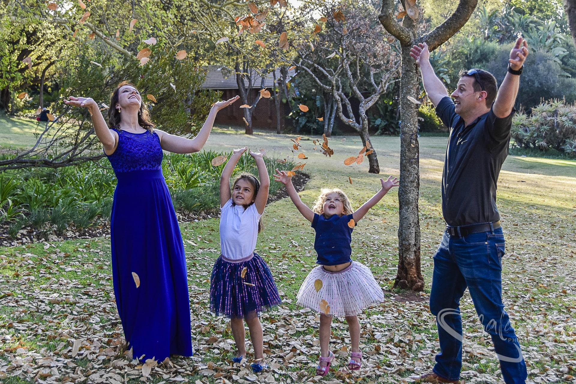 Stokes family photo shoot playing in the leaves at Jan Cilliers Park