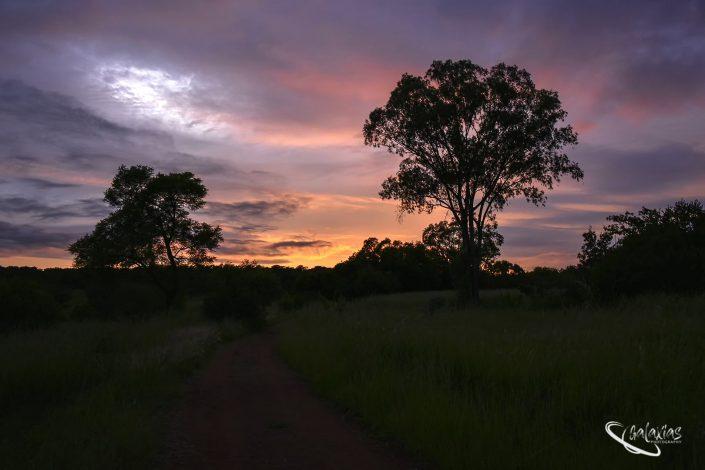 Sunrise at Goodland estate